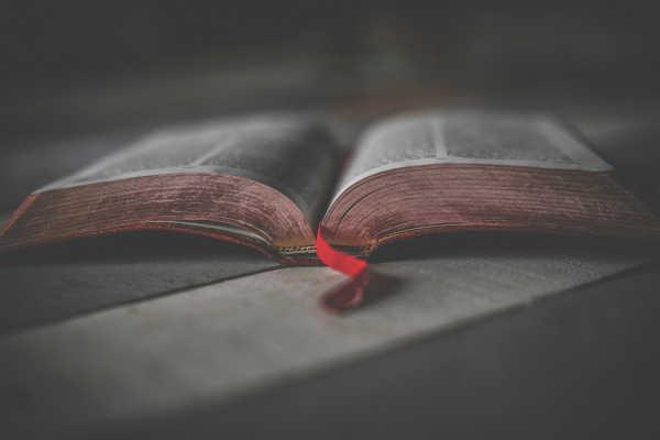 Lent Scripture Study